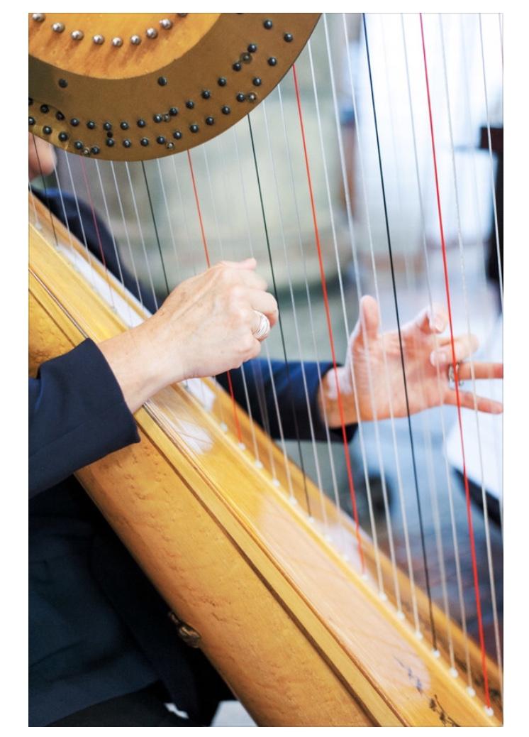 Harpist Fingers Minnesota