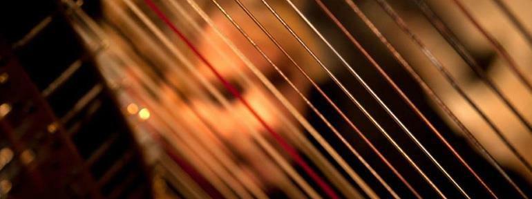 Laurie Leigh Harpist Minnesota