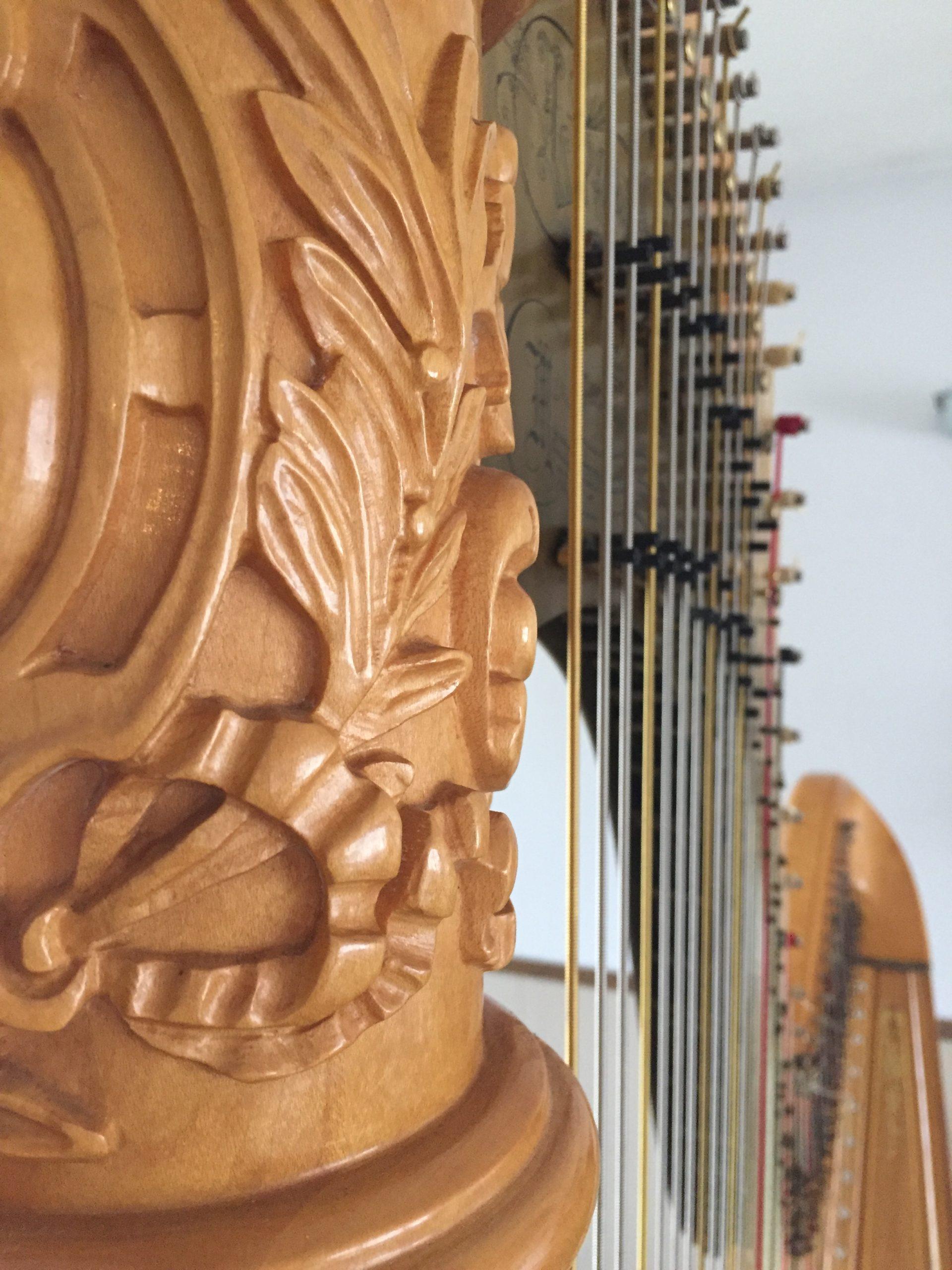 Harp MN