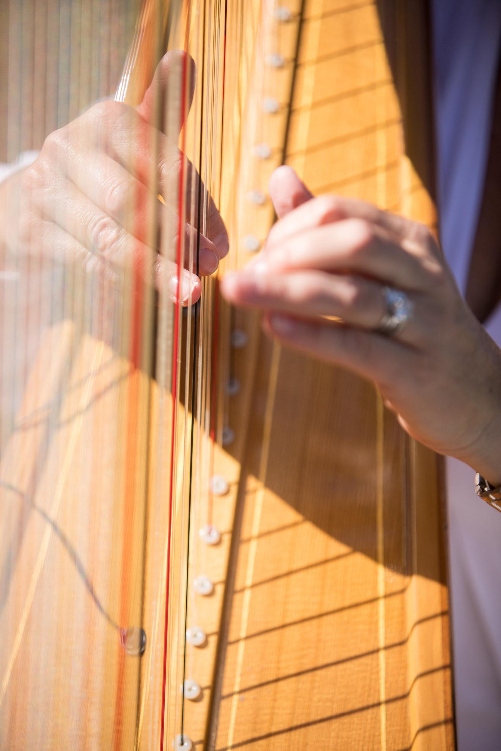 Harpist Position Minnesota