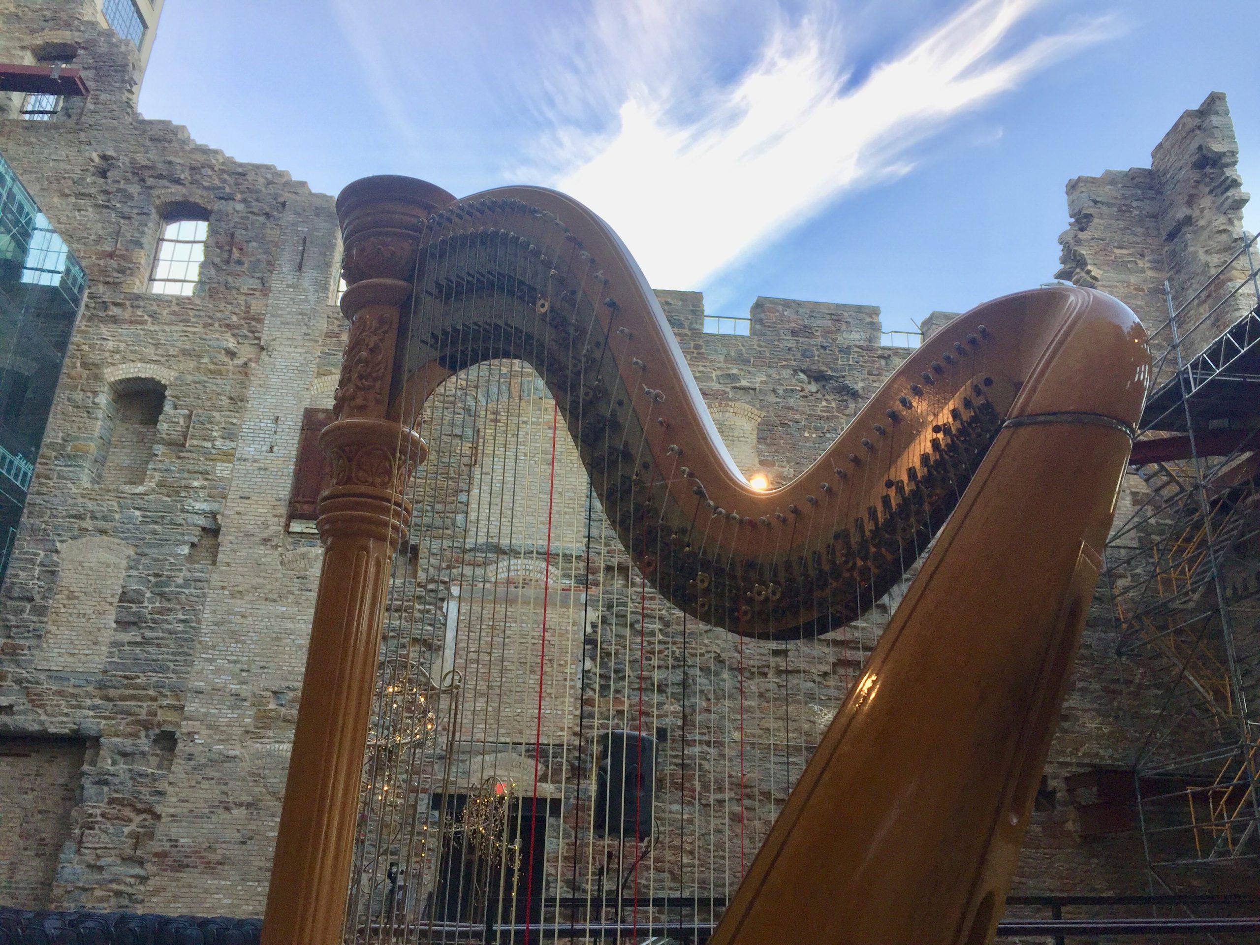 Concert Harpist Minnesota