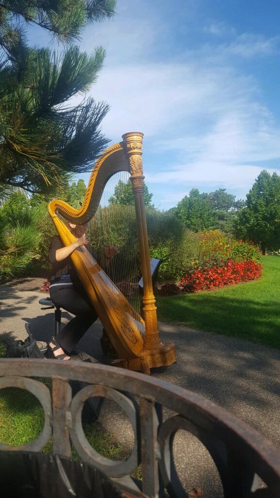 Garden Event Harpist